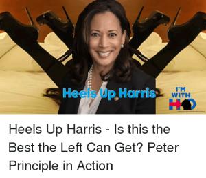 heels-up-harris-with-heels-up-harris-is-41397729