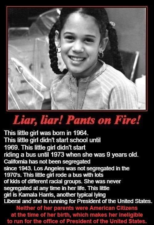 kamala liar liar liar pants on fire